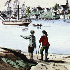 Des-Barres small insert