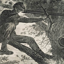 Detail from Sharpshooter by Winslow Homer