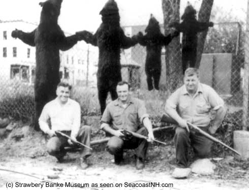 Four bear kill, Portsmouth, NH (c) Strawbery Banke ARchive on SeacoastNH.com (COurtesy Pecunies Family)