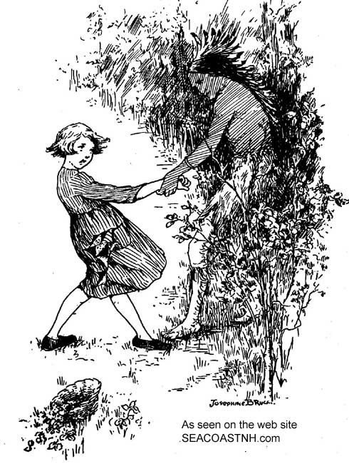 Abduction of NH girl by Indians in early 20th century illustration / SeacoastNH.com