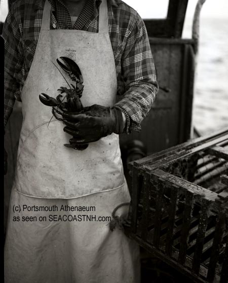 Lobster in hand in Portsmouth, NH 1953 (c) Portsmouth Atheneum