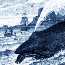 Whaling00