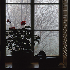 window_winter